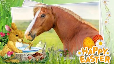 frohe ostern pferd 390x220 - Frohe ostern pferd