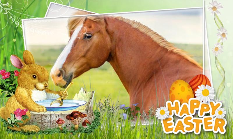 frohe ostern pferd  bilder und sprüche für whatsapp und