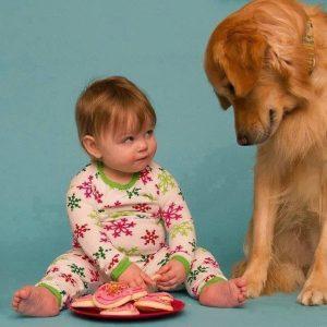 Bilder Schäferhund Für Facebook 300x300 - Bilder Schäferhund Für Facebook