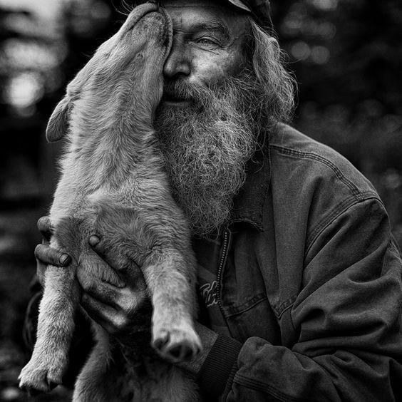 Chinesische Hunderassen Mit Bild - Chinesische Hunderassen Mit Bild