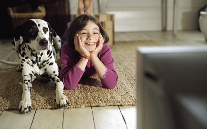 De Kawa Hund - De Kawa Hund