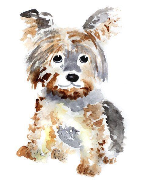 Der Hund Bilder Für Facebook - Der Hund Bilder Für Facebook
