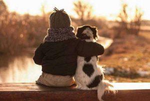 Französische Hunderassen Bilder Für Facebook 300x203 - Französische Hunderassen Bilder Für Facebook