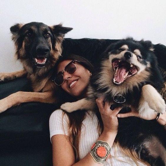 Hund Elo - Hund Elo