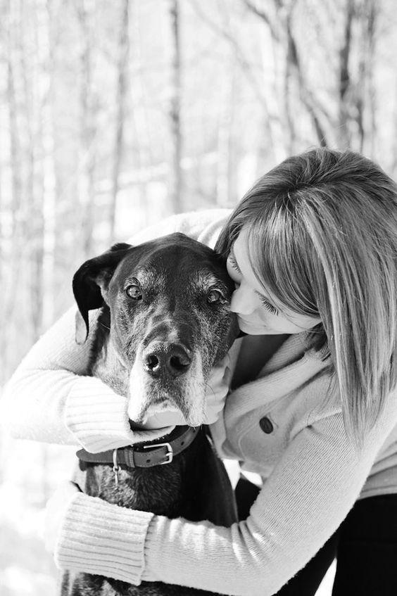 Hundebilder Mit Spruch Für Facebook - Hundebilder Mit Spruch Für Facebook