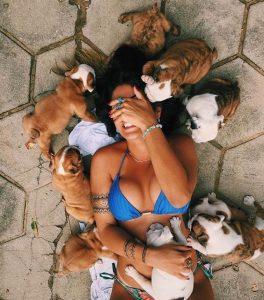 Lustige Bilder Hunde 264x300 - Lustige Bilder Hunde