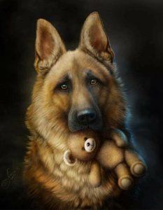 Lustige Hunde Bilder Kostenlos Kostenlos 233x300 - Lustige Hunde Bilder Kostenlos Kostenlos