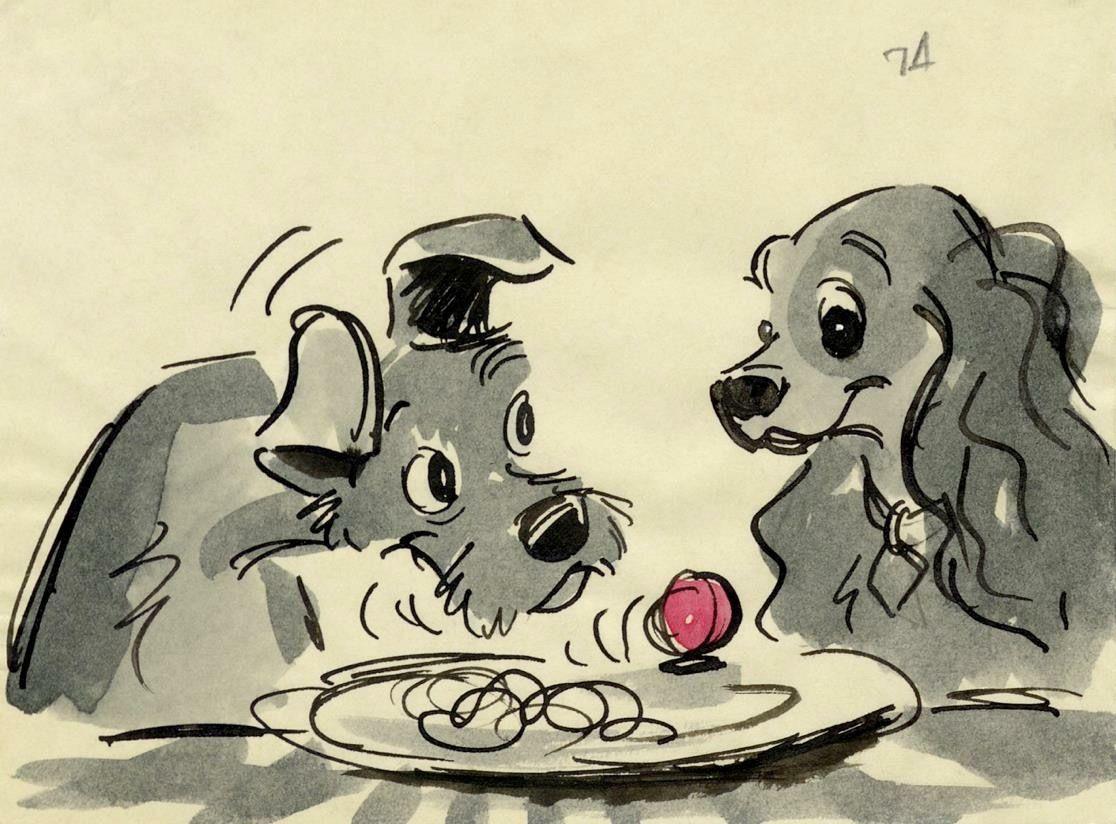 Namen Hunderassen - Namen Hunderassen
