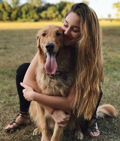 Schöne Bilder Von Hunden - Schöne Bilder Von Hunden