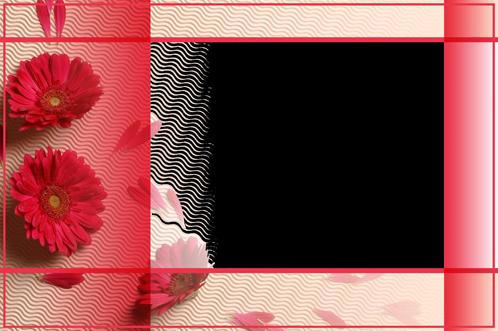 liebe und rosen fotorahmen | bilder und sprüche für