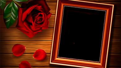 Rahmen für Foto Rose auf dem Tisch Liebesrahmen 390x220 - Rahmen für Foto Rose auf dem Tisch Liebesrahmen